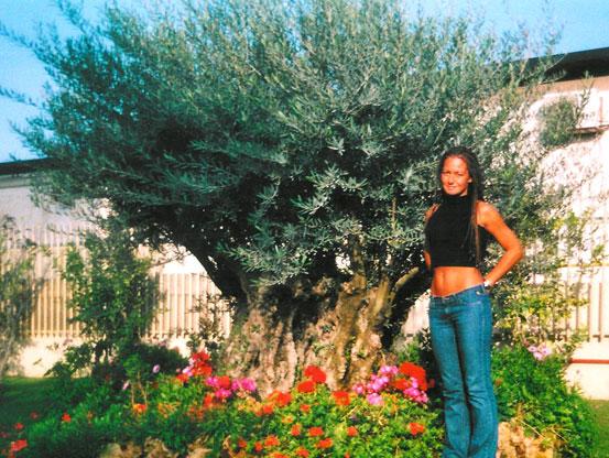 I Giardini di Maggi: olivo secolare