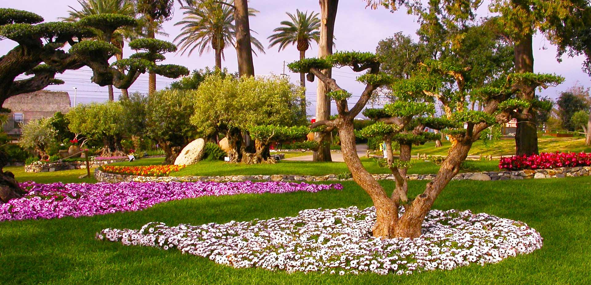 I Giardini di Maggi: mettiamo a dimora piante di ogni dimensione