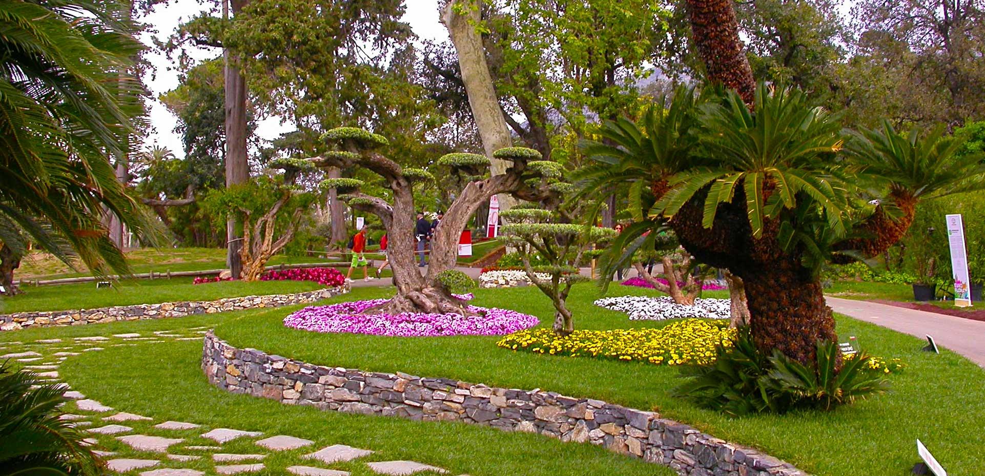 I Giardini di Maggi: curiamo qualsiasi area verde e soddisfiamo ogni richiesta