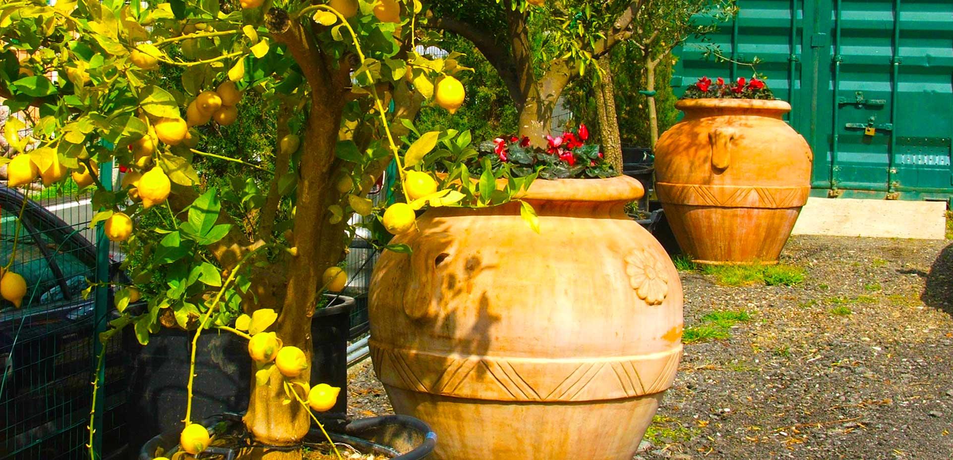 I Giardini di Maggi: vasi e oggettistica